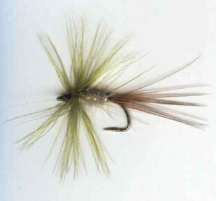 greendrake - dry fly pattern
